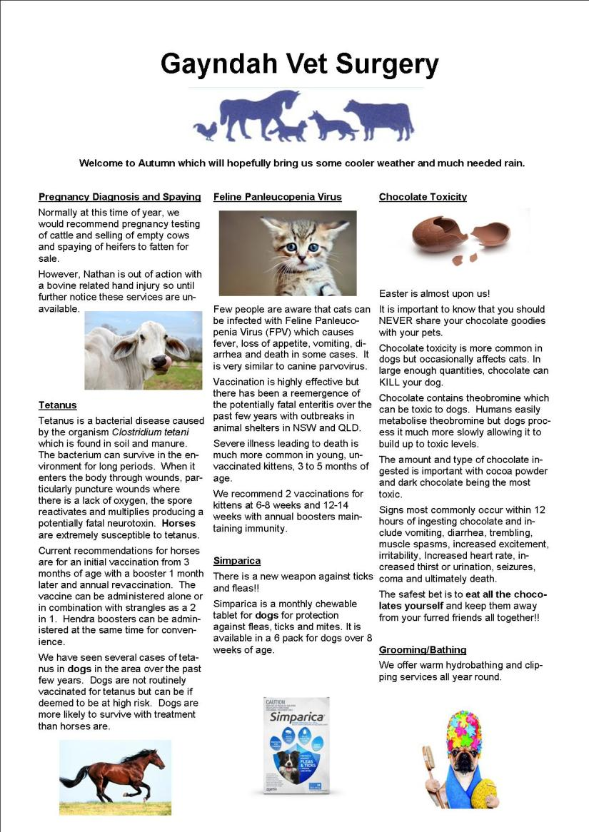Autumn newsletter 17 email jpeg