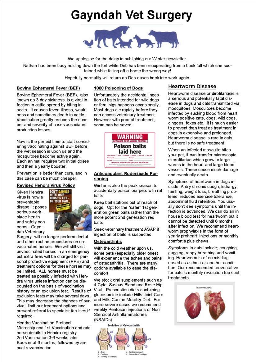 Winter newsletter 18 image